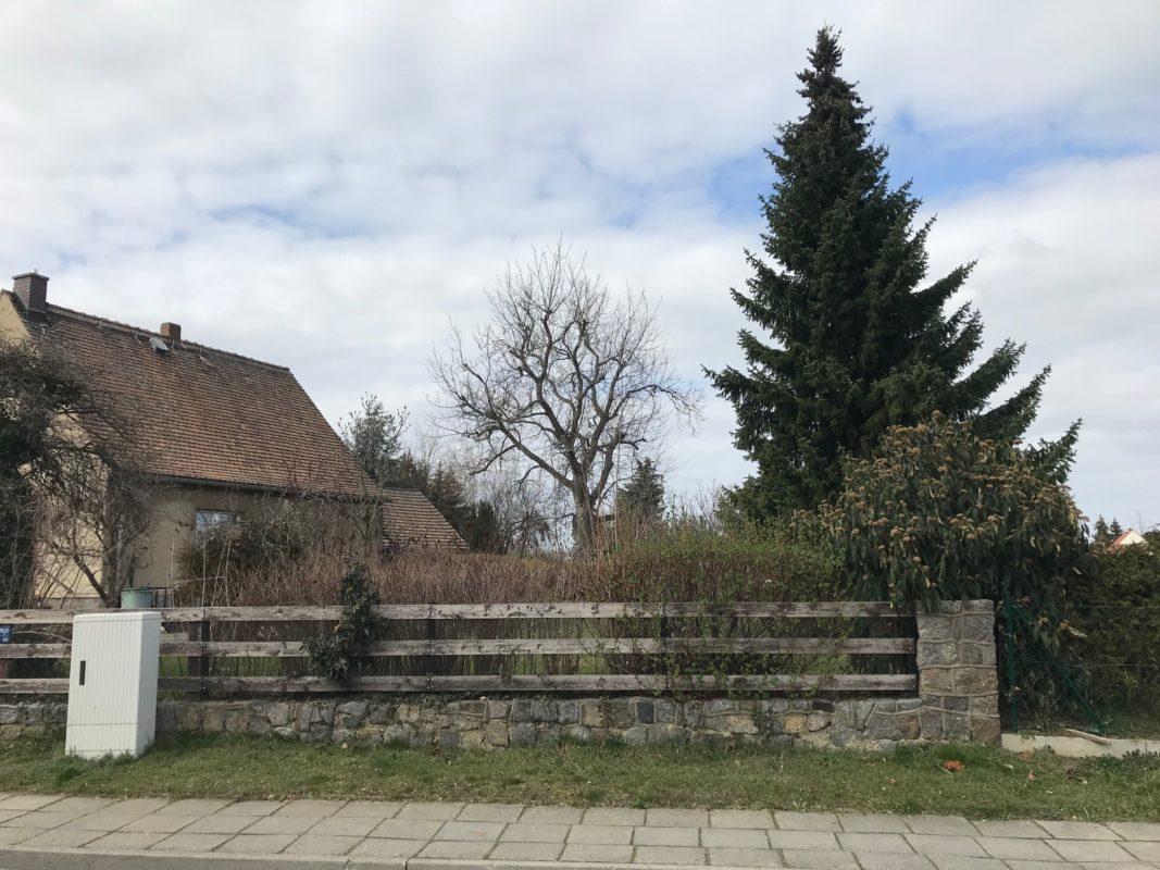 Baugrundstück in zentrumsnaher Wohnlage in 03205 Calau